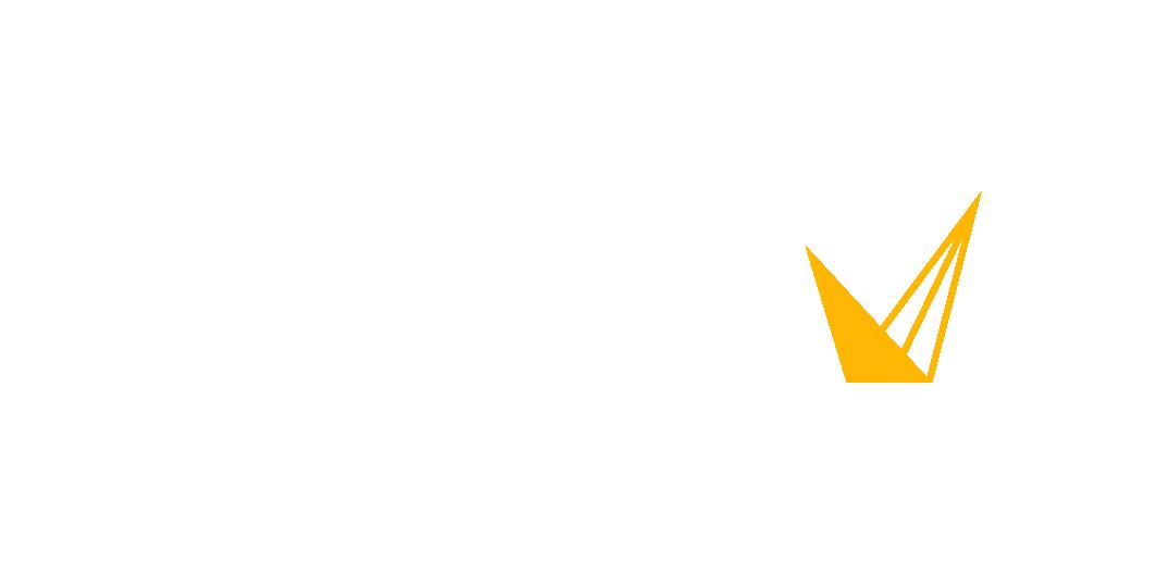 Voyis